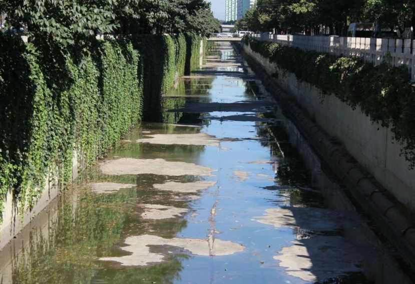 "The Wanquan ""river"" in Beijing. Quartz / Lily Kuo."