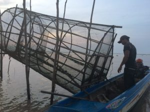 Fisherman checks his nets on Cambodia's Tonle Sap.